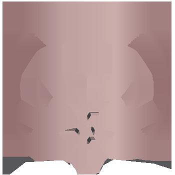 haute coiffure fav Logo